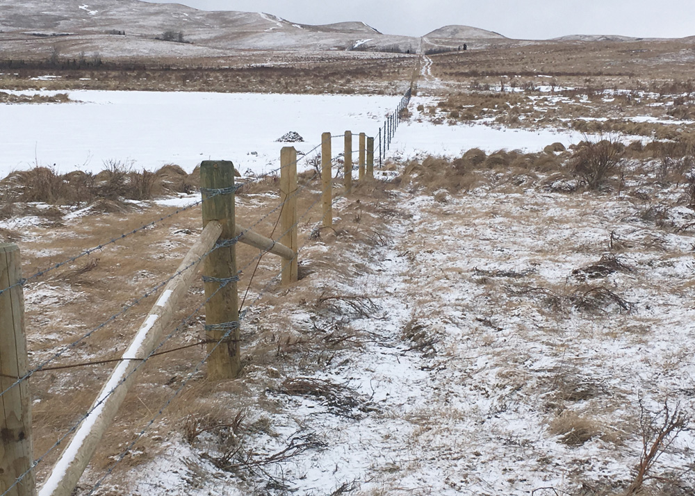diy fence Barbed Wire Fence