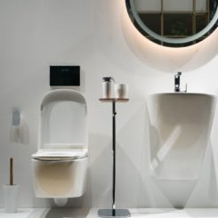 Beautiful way to divide the toilet and sink