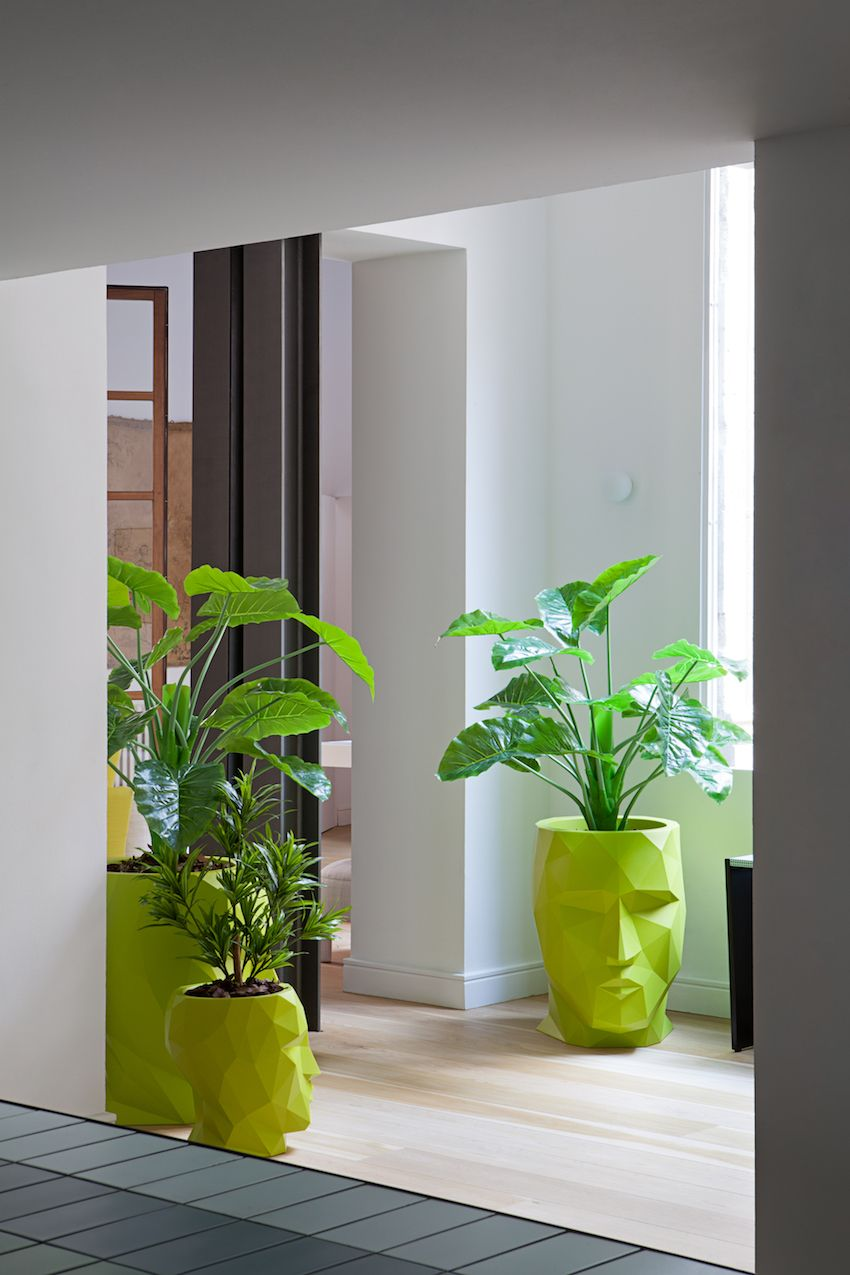 Head-shaped planters are used throughout the home in different sizes and colors.