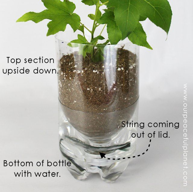 15 diy self watering planters that you can craft today. Black Bedroom Furniture Sets. Home Design Ideas