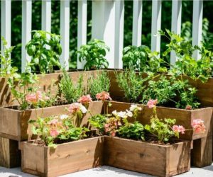 Beautiful DIY Planter Box Ideas That Anyone Can Build