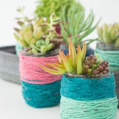 Yarn wrapped succulent pots
