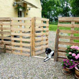 Cheap pallet Fence