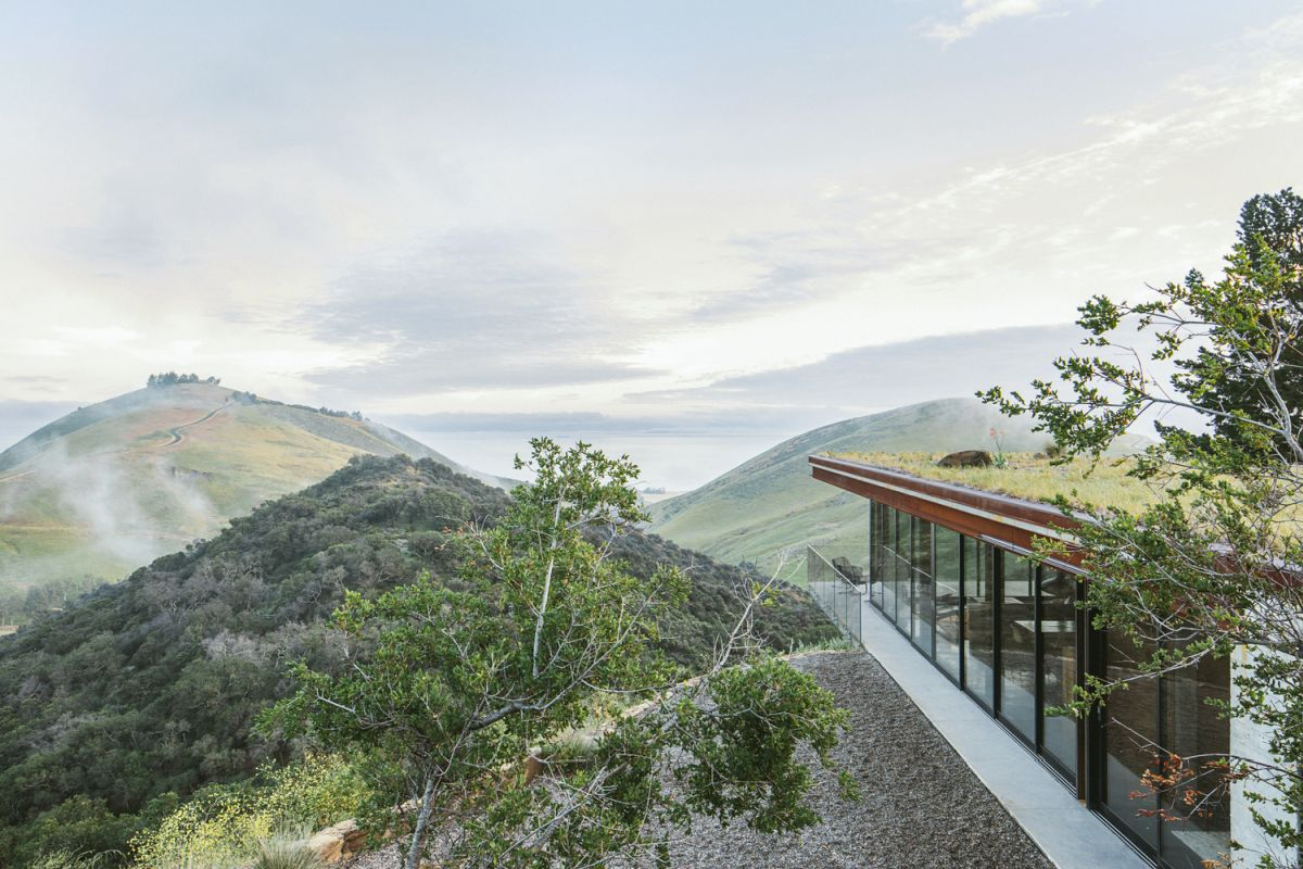 The green roof and the house's low profile allow the building to seamlessly blend in with the landscape