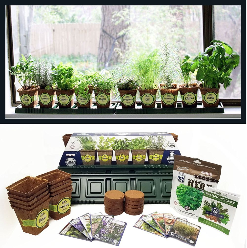 Windowsill Herb Planter: How To Grow Your Very Own Indoor Herb Garden