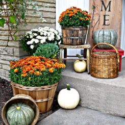Baskets with flowers and pumpkins