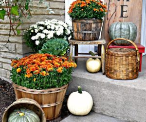 A Bountiful Collection Of Outdoor Fall Decor Concept