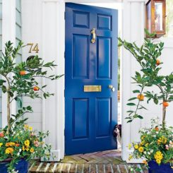 good feng shui front door ideas