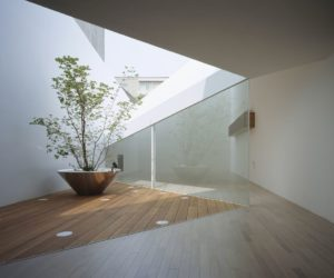 The Architecture vs Nature Relationship Emphasized By Indoor Trees