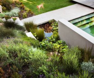 Backyard Landscaping Concept Inspired By Past Architecture Projects
