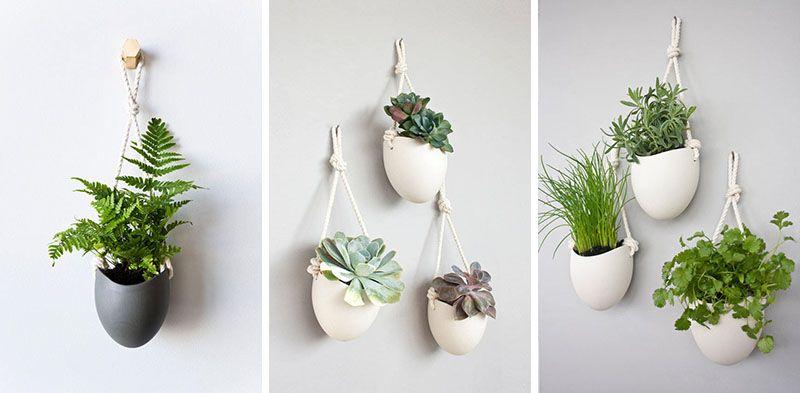 A cute series by Light + Ladder