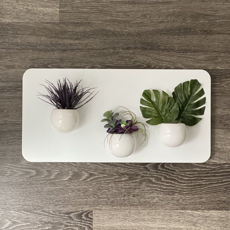 The Magnetic Hammie planters
