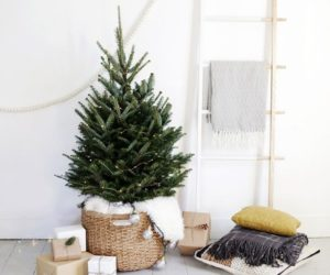 How To Decorate With Mini Christmas Trees – Cute And Practical Concept