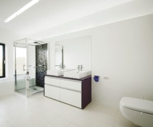 White bathroom with accent shower wall in black
