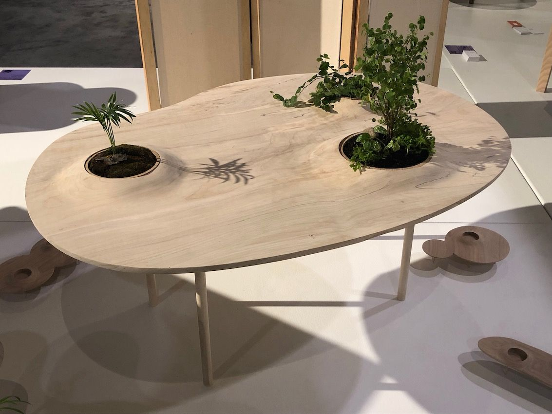 A plain table becomes a landscape of wood and greenery,