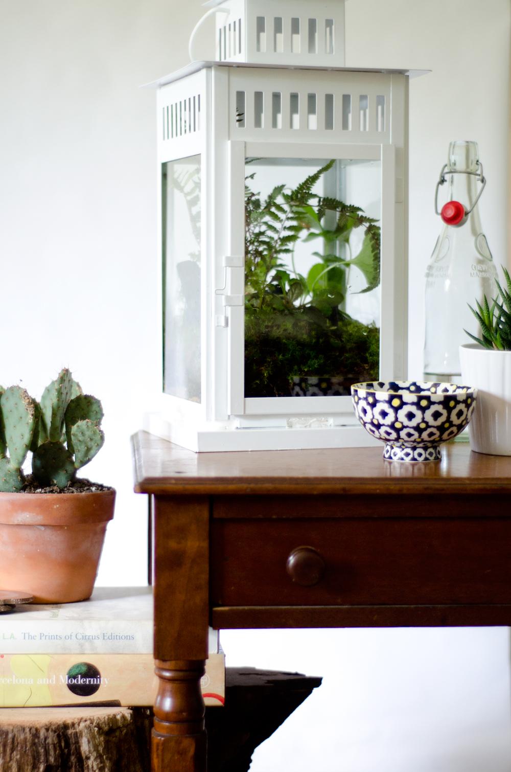 Borby DIY Terrarium