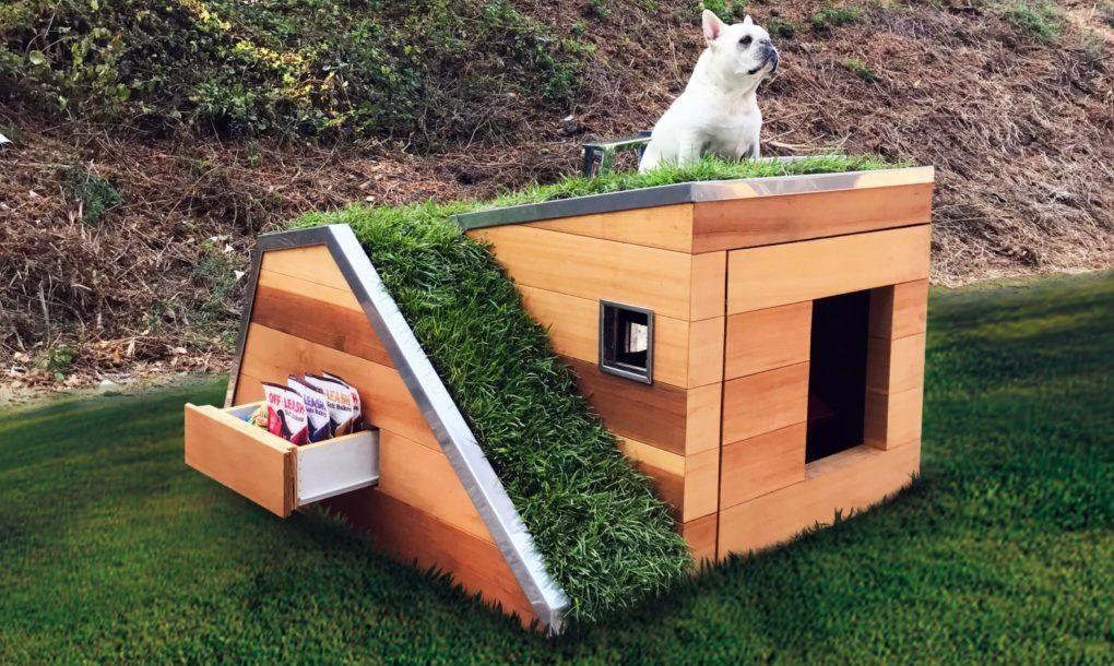 Unique Dog House Designs 4