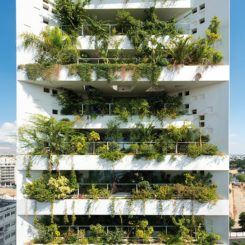 White walls building with lush vegetation