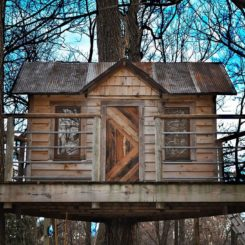 Beautiful DIY wood tree house decor