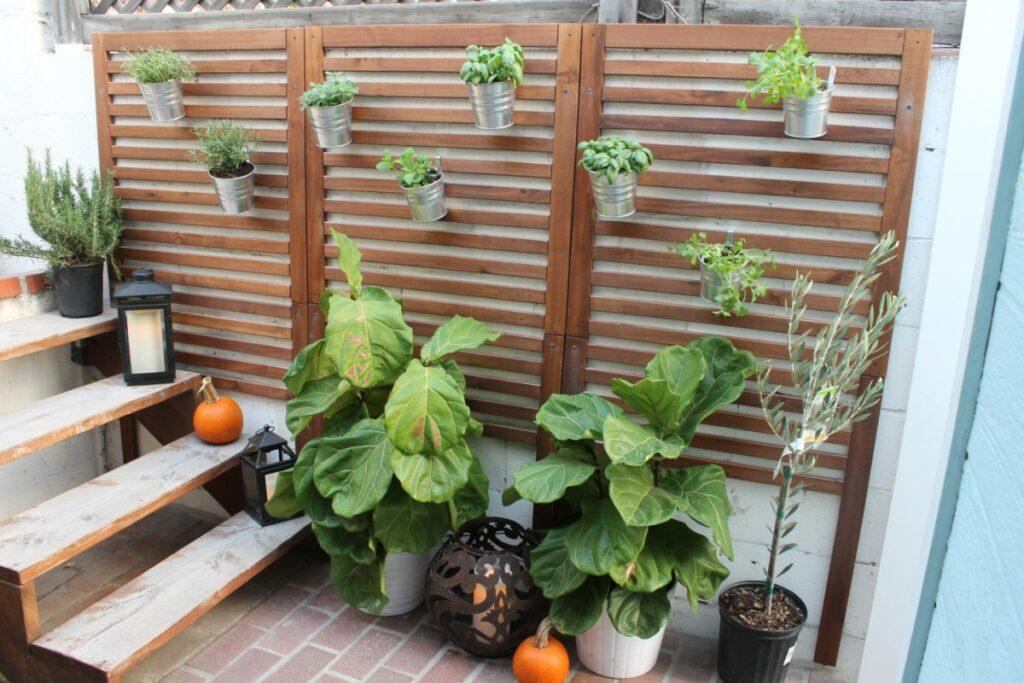 Take Your Garden Vertical
