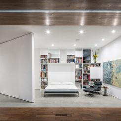 Buit in murphy bed emerges from the floor to ceiling