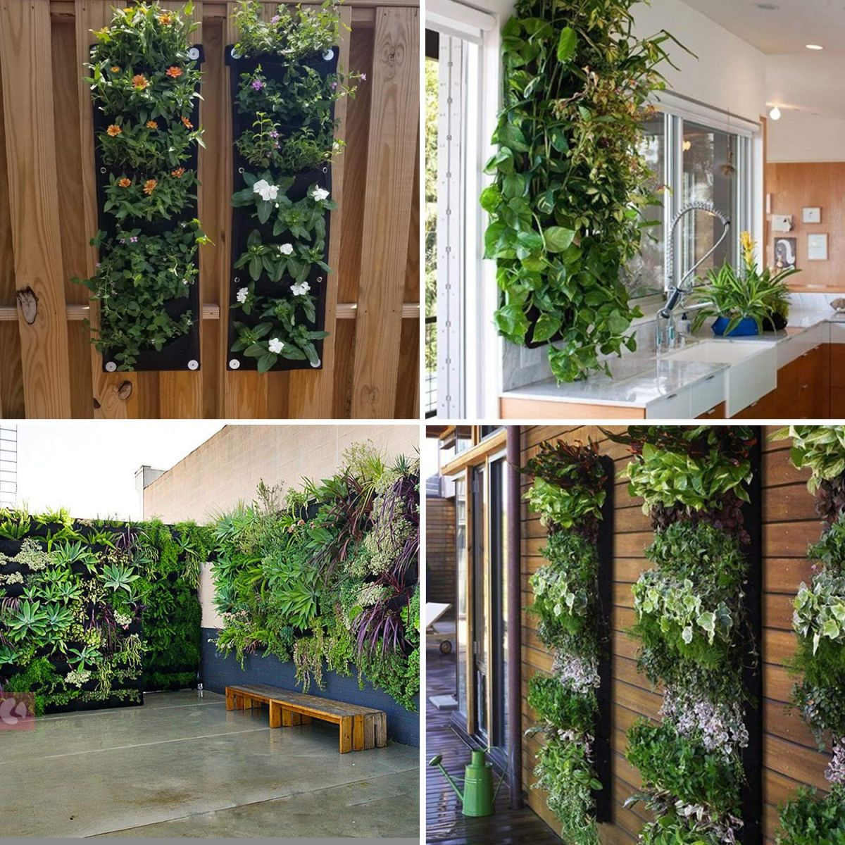 Beautiful Vertical Garden Ideas: Beautiful Vertical Planter Ideas For Homes And Gardens