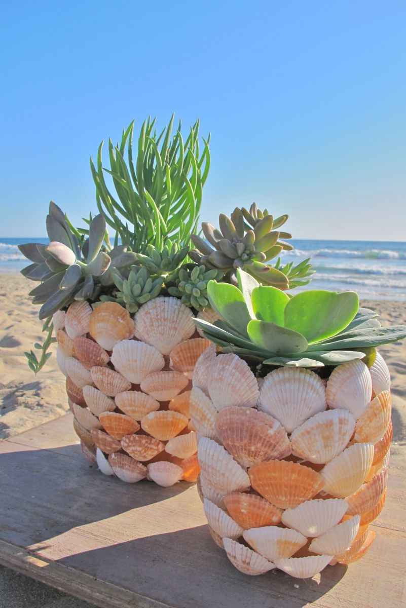 Put Your Beach Treasures On Display – Beautiful DIY Seashell Crafts
