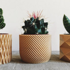 Biodegradable Planters Are Made From 3D Printed Wood