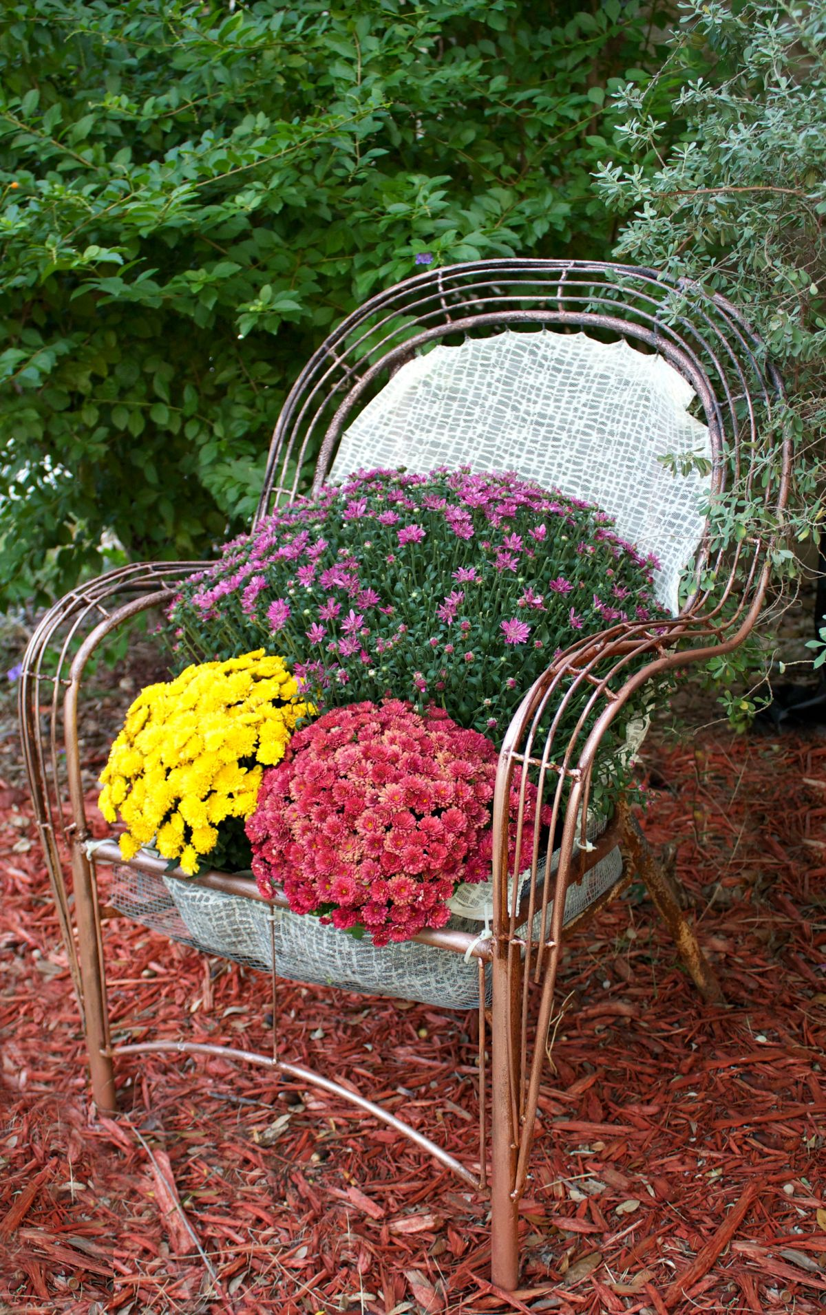 Old garden chair turned into a planter bed
