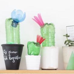 Upcycled plastic bottles cacti