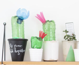 DIY Projects You Can Make With Humble Plastic Bottles