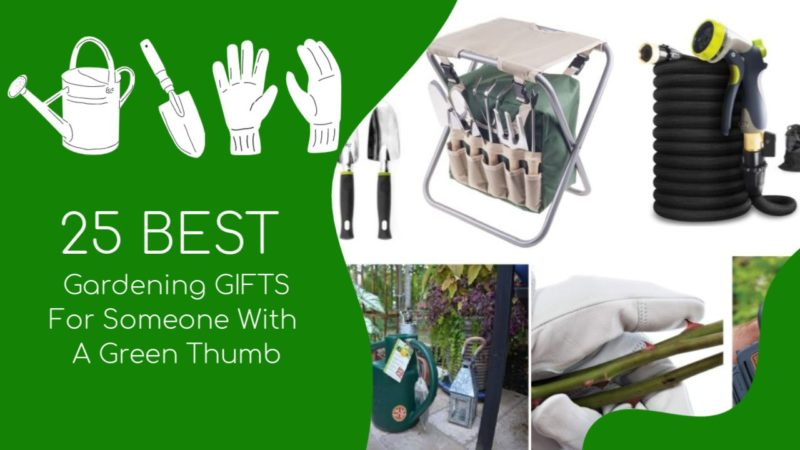 25 Best Gardening Gifts For Someone With A Green Thumb