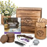 Indoor Herb Garden Seed Starter Kit