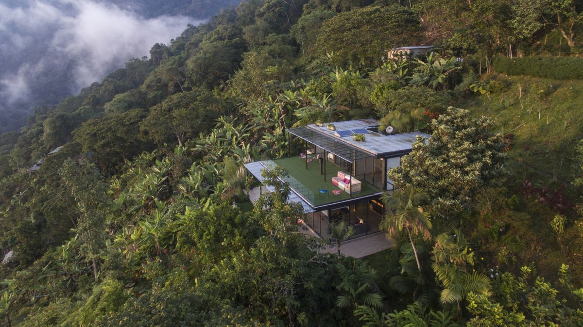 The house rises over the tree canopies and gives the impression of floating in the sky