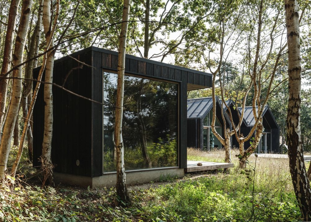 The project shows great respect for the natural surroundings and the vegetation present on the site