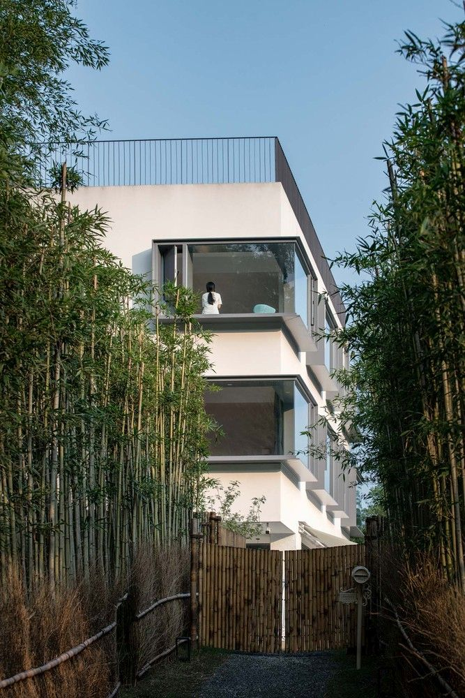 In order to enter this house/ hotel one has to go through a long walkway framed by tall bamboo