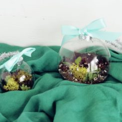 Terrarium Ornaments for Christmas Tree