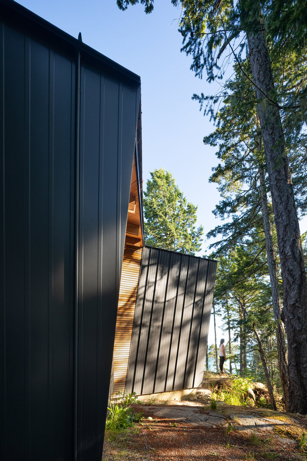 The dark exterior helps the structure blend into the landscape and gives it a modern-industrial appearance