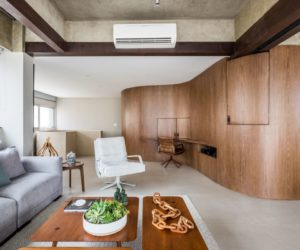 Dynamic Curved Element Defines a Renovated, Contemporary Brazilian Loft