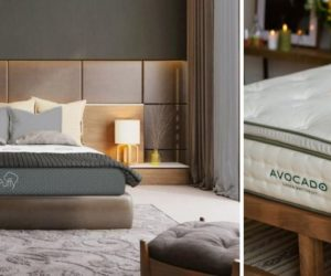 Puffy vs Avocado Mattress: Which Should You Choose?