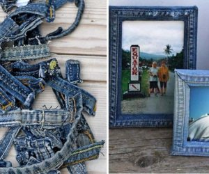 The Best 12 Ways to Repurpose Items in and around the house