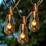 20 Edison Bulbs Vintage Bistro String Lights