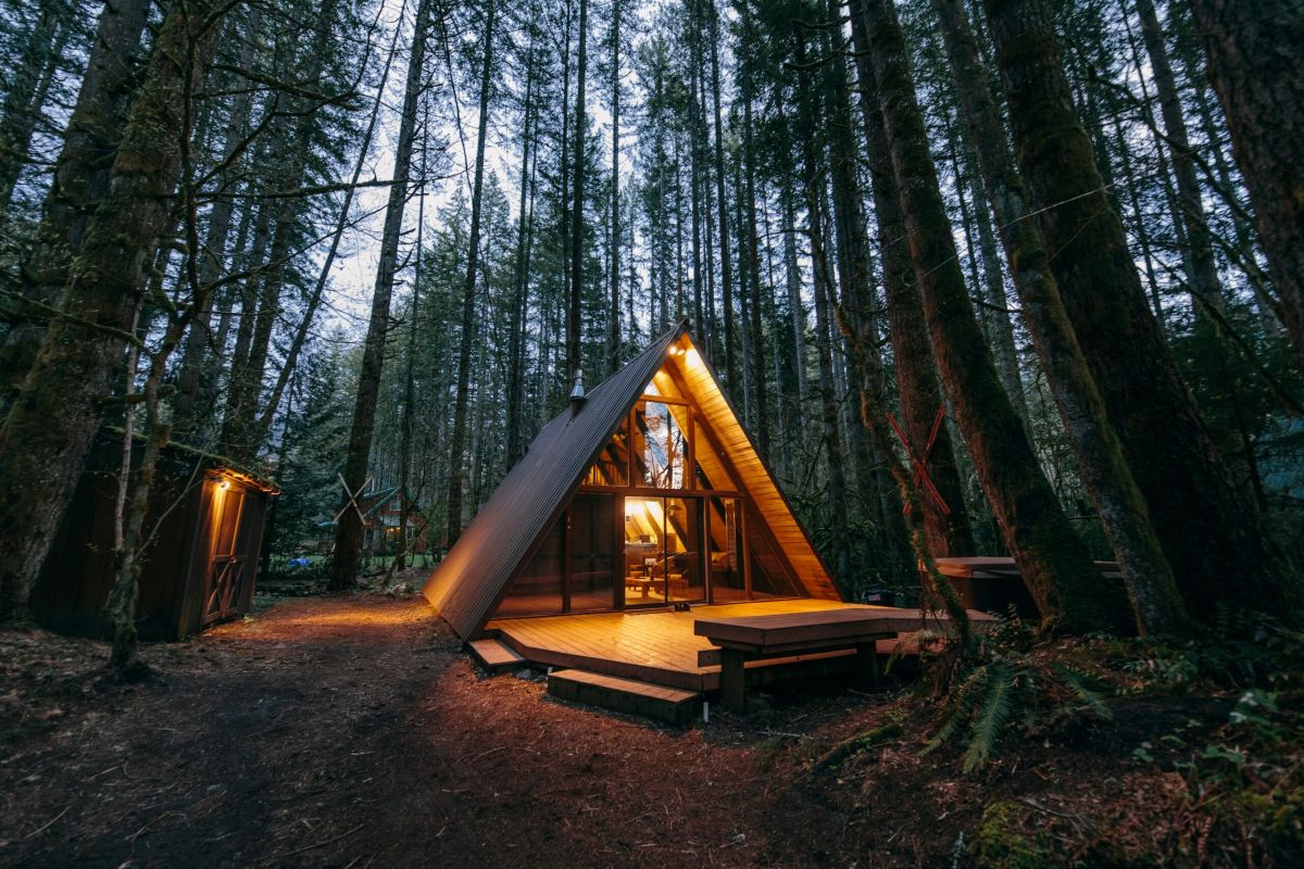The cabin is nestled between tall trees which frame it on all sides