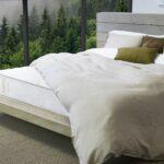 Zenheaven mattress