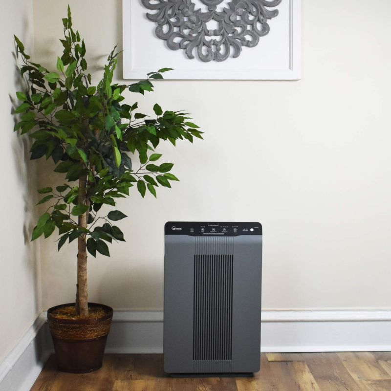 The Best Air Purifiers For Pets Let You Breathe Easier Around Furry Friends
