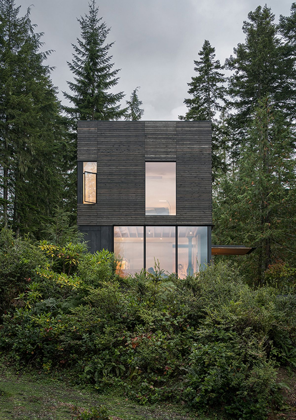 Dense vegetation and trees surround the cabin on all sides, creating a green shield around it