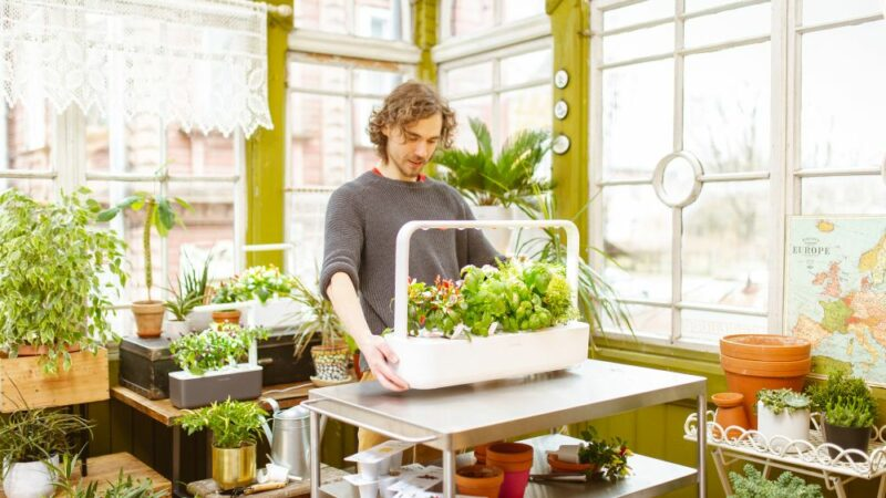 Click and Grow Smart Herb Garden Review  – The Best Self Watering Pots