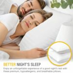 DreamNorth Gel Loft Pillow