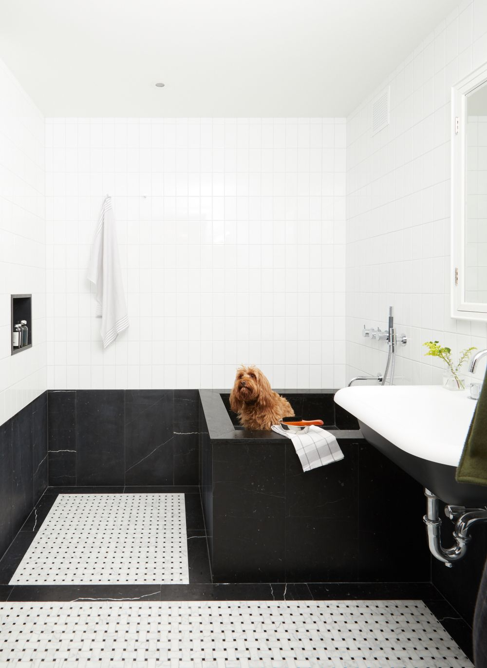 This bathroom doubles as a pet spa, featuring a tall but shallow shower and sink area for the dogs