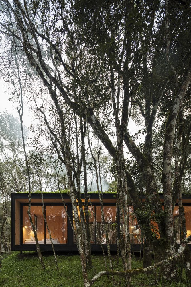 The flat roof gives the cabin a low profile and also allows it to maintain a contemporary appearance